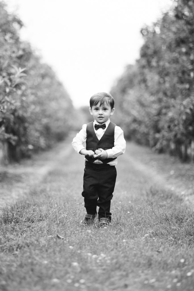 little boy in the orchards of the barnyard
