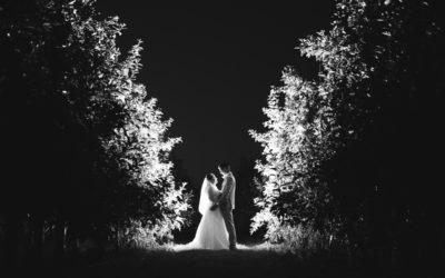 Natalya & Anthony – The Barnyard Twilight Wedding